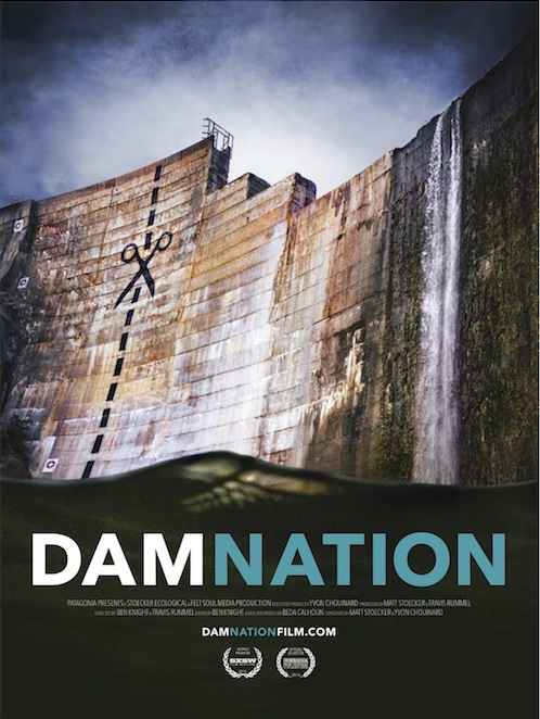 DamNation_poster